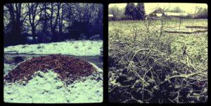brf-sous-la-neige
